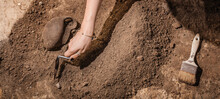 Cropped Hand Of Woman Digging Ground
