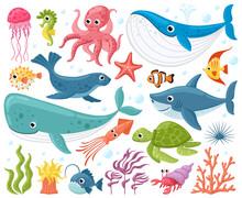 Cartoon Sea Animals. Cute Ocean Fish, Octopus, Shark And Turtle, Jellyfish, Crab And Seal. Underwater Wildlife Creatures Vector Illustration Set