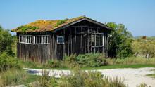 Vieille Cabane à Fort Boyer En 2011