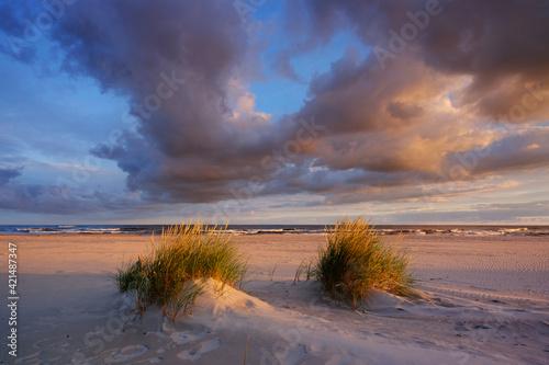 Fototapeta Letni wschód słońca nad Bałtykiem obraz