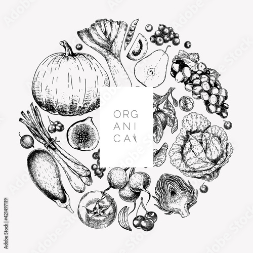Fototapeta Hand drawn vegetables and fruits. Vector pupkin, pear,apple, artichoke, plum, grape, tomato, onion, cheery, gooseberry blackberry Engraved illustration Menu flyer package design. obraz