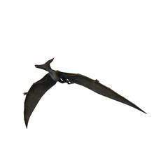 Pteranodon Dinosaur. 3D Illustration Isolated On White Background.