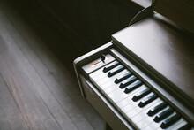 High Angle View Of Organ Keys