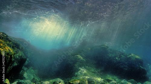 Fototapeta Underwater landscape and scenery in sunlight obraz