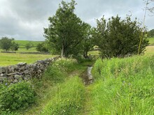 Rural Scene, With A Waterlogged Track By A Farm Gate, With Fields, Trees, And A Cloudy Sky Near, Appletreewick, Skipton, UK