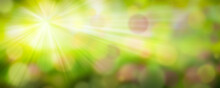 Verschwommene Landschaft Im Frühling Mit Bokeh Effekt Und Sonnenstrahlen