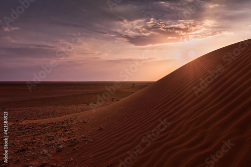 Foto Sunset over the desert