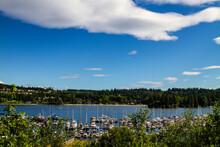 USA, Washington State, Port Ludlow. Boat Marina.