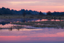 Beautiful Sunrise Over Marshy Wetlands