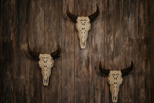 Close-up Of Animal Skull Hanging On Wooden Wall In Rustic Interior