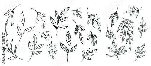 Obraz na plátně Graphic plant