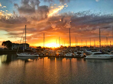 Sailboats Moored At Harbor During Sunset