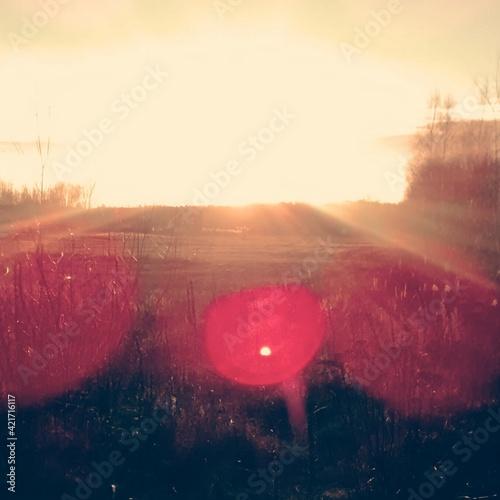 Canvas Print Idyllic View Of Sunlight Falling On Landscape