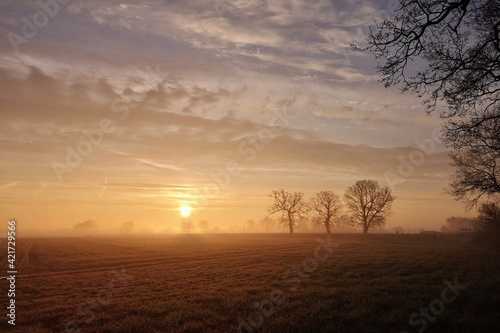 Fotografie, Obraz Scenic View Of Field Against Sky During Sunset