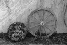 Wheel Of Carriage