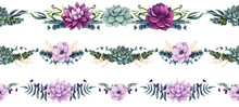 Set Of Watercolor Horizontal Seamless Borders With Flowers And Succulent