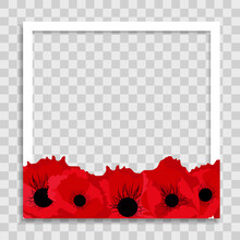 Empty Photo Frame Template With Spring Poppy Flowers For Media Post  In Social Network. Vector Illustration