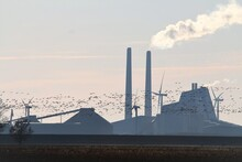 Gigantic Flock Of Arctic Geese Passing In Front Of A Powerplant.