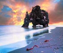 Beautiful Dramatic Landscape With  Extraordinary Rock Formation Hvitserkur On Vatnsnes Peninsula In North-West Iceland. Exotic Countries. Amazing Places