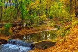 Amazing autumn view of Perlovska reka river, Sofia, Bulgaria