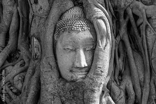 Fototapeta Budhha Head, Sukhothai, Thailand