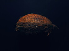 Close-up Of Coconut Against Black Background