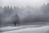 Winter Landscape From Rodnei Mountain. A Cold Foggy Morning With Heavy Snow. - 421920597