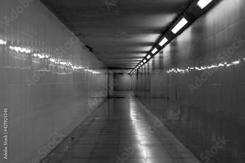 Fotografia Tunel
