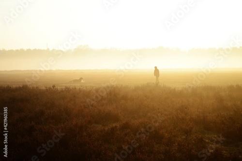Obraz Silhouette Of Man On Field During Sunset - fototapety do salonu