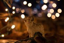 Close-up Of Statuette Of Nativity Scene Sitting Against Illuminated Blurred Background