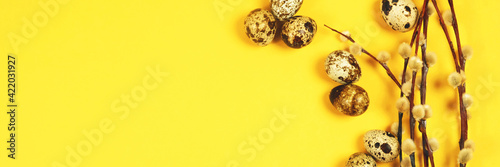 Fotografie, Obraz The easter background with the willow branches and quail eggs on the trendy yellow background with the copy space for your text, banner