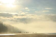Morning In Latvian Beachside