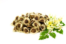 Pile Of Moringa Seed And Moringa Flower With Leaf Isolated On White Background. The Dried Seeds In The Pod Are Ready For Propagate. Natural Herbs Can Be Extracted Into Oil For Healthcare.