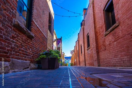 Billede på lærred Fort Collins Alleyway