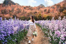 Young Asian Woman Carrying Bouquet Wicker Basket In Margaret Flower Garden At Countryside
