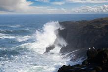 Two Seagulls On A Rock Headland Watching The Crashing Waves, Dep;oe Bay Oregon