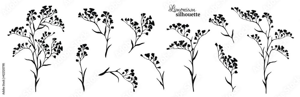 Fototapeta Set of black limonium branches. Vector illustration