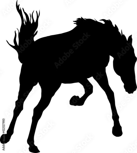 Fotografie, Obraz black isolated realistic silhouette of a galloping kicking horse on a white back