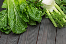 Fresh Green Lettuce Leaves Romaine And Fennel