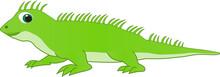 Green Chameleon Cartoon