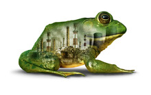 Habitat Pollution Concept And Environmental Damage Or Climate Change Urgency Idea As A Green Frog Infected With Pollution And Toxic Chemicals With 3D Elements
