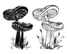 Two Silhouette Mushrooms