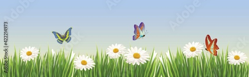 Canvas-taulu Floral summer or spring landscape, meadow with flowers, blue sky and butterflies