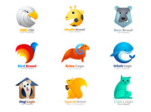 Animal Logo Collection Eagle, Giraffe, Bear, Bird, Ram, Ram, Whale, Dog, Squirrel, Cat Symbol.