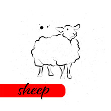 Chinese Sheep Year Calendar Animal Silhouette Isolated On White Textured Background. Vector Hand Drawn Sketch Style Illustration. For Banners, Cards, Advertising, Congratulations.