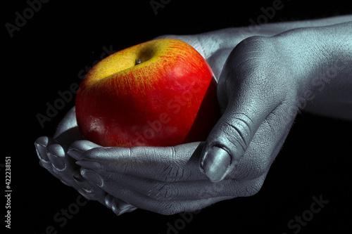 Fototapeta apple in hand obraz