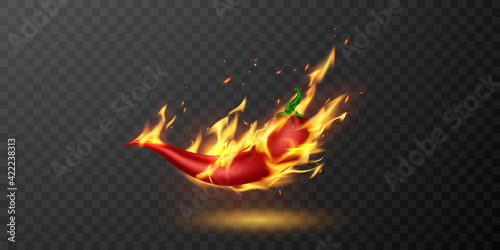 Obraz na plátně medium and hot fire chilli pepper.