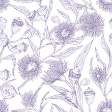 Seamless Floral Pattern With Blossomed Flowers Of Eucalyptus On White Background. Endless Botanical Texture For Printing. Hand-drawn Vector Illustration Of Backdrop In Vintage Style