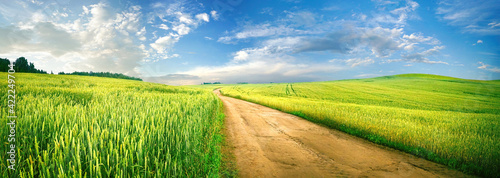 Fotografia Beautiful summer rural natural landscape with fields young wheat, blue sky with clouds