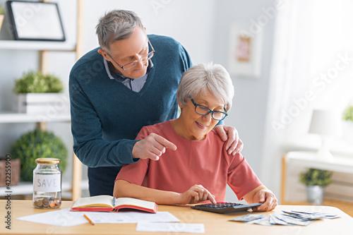 Fototapeta couple managing the family budget obraz